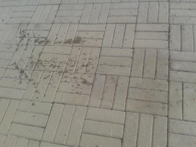 Как удалить пятна на тротуарной плитке фото