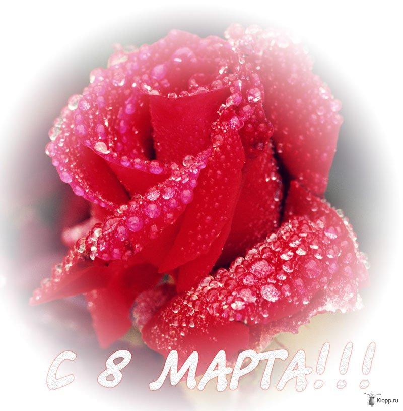 http://www.cleannow.ru/forumsfoto/big52214689885-3431944873.jpg