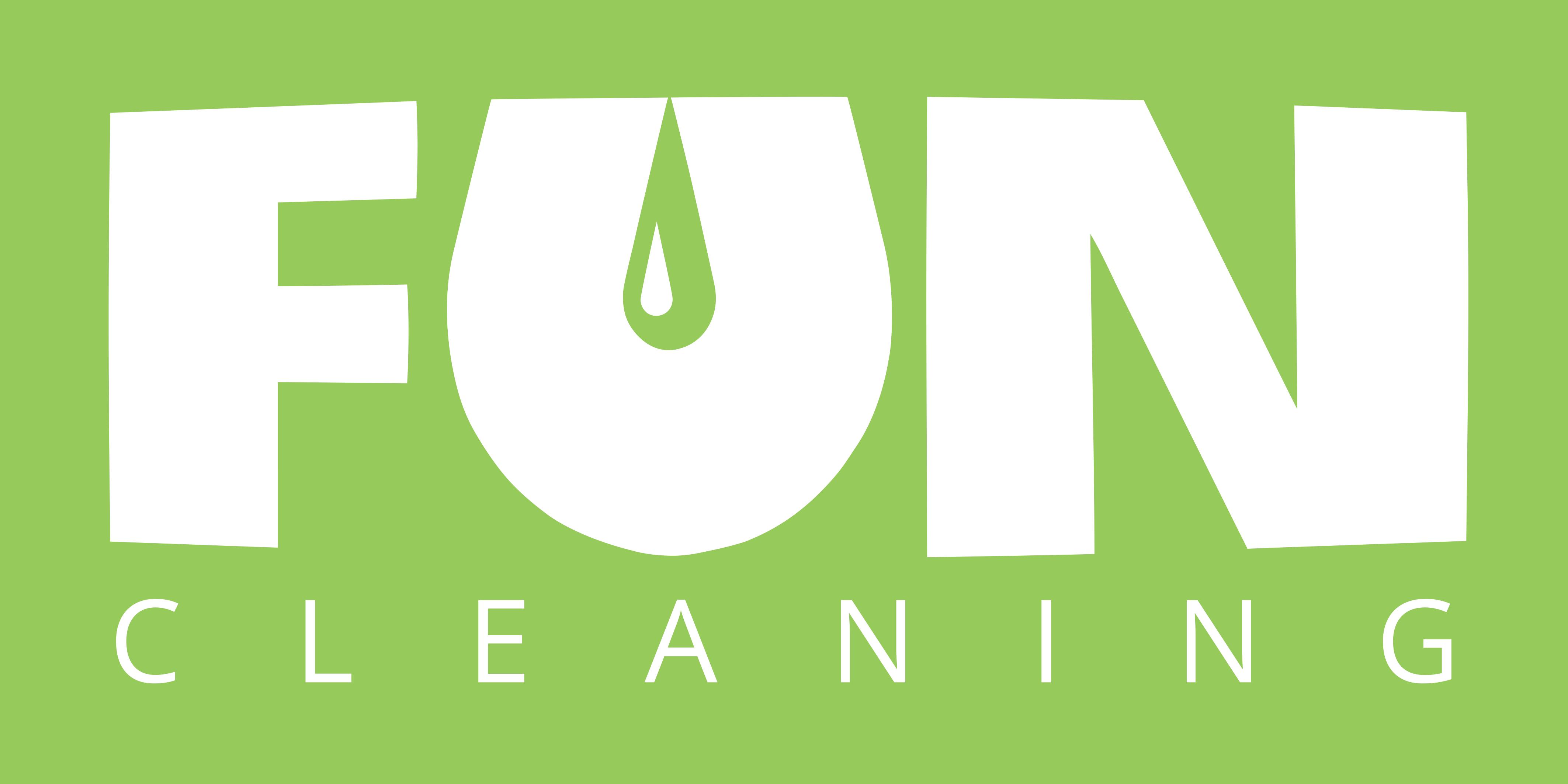 Fun Cleaning