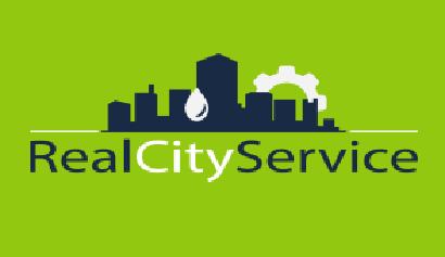 RealCItyService