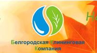Белгородская клининговая компания