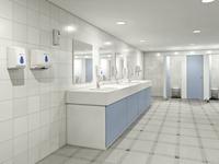 Глобальный опрос SCA: как мы используем туалетные комнаты  
