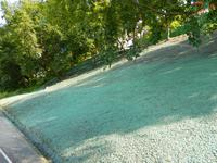 Bonex Group умеет сеять газон на крутом откосе |
