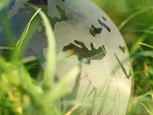 Ронова развивает зеленый клининг в России |