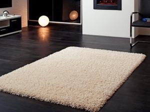 В пятницу в Москве пройдет практический семинар по чистке ковров |