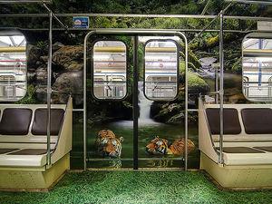 GreenEco помогла подготовить в московском метро «Полосатый рейс» |